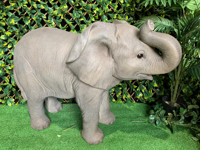 African Elephant - Prop For Hire