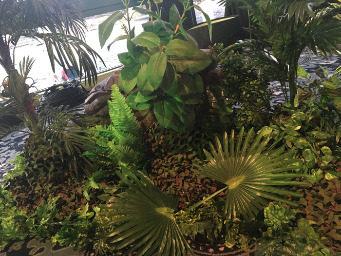 African Foliage - Prop For Hire