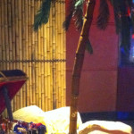 Bamboo Palm Tall - Prop For Hire