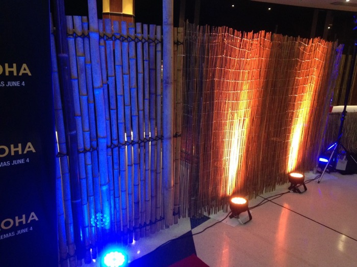 Bamboo Reed Walls 2 - Prop For Hire