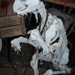 Beast Carcass - Prop For Hire