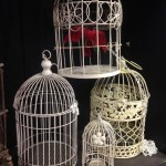 Birdcage 4 - Prop For Hire