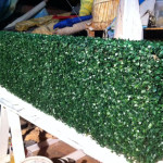 Box Hedge - Prop For Hire