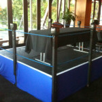 Boxing Ring - Prop For Hire