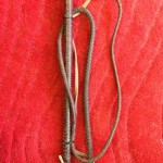 Bull Whip - Prop For Hire