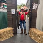 Cowboy Entrance - Prop For Hire