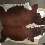 Cowhide - Prop For Hire