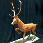 Deer - Prop For Hire