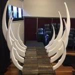 Elephant Ribcage - Prop For Hire