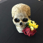 Engraved Skull - Prop For Hire