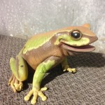 Forest Frog - Prop For Hire