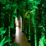 Forest Walls Backdrop - Prop For Hire