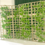 Garden Lattice Backdrop - Prop For Hire