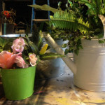 Garden Watering Can - Prop For Hire