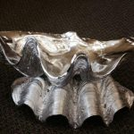 Giant Clam - Prop For Hire