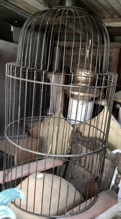 Giant Parrot Cage - Prop For Hire