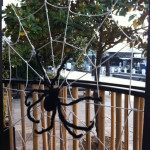 Giant Spider's Web - Prop For Hire