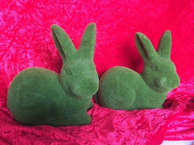 Green Bunnies - Prop For Hire