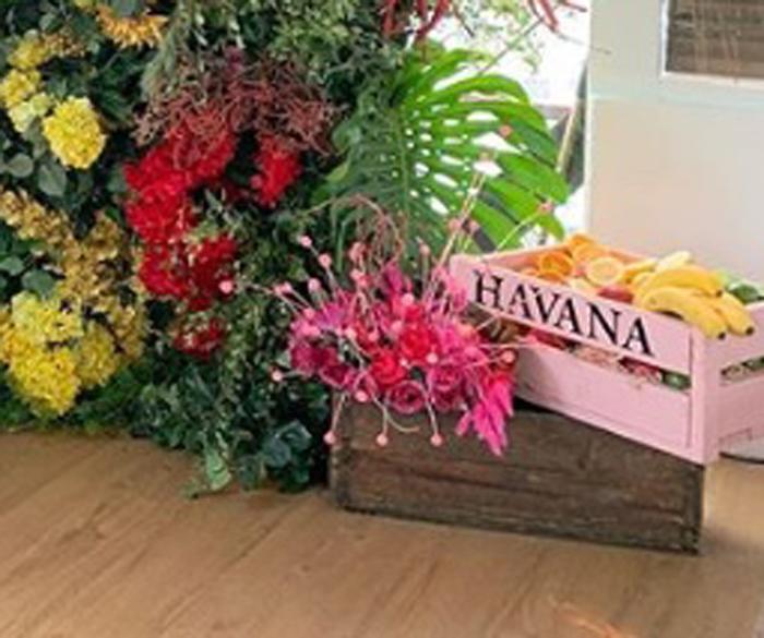 Havana Crates - Prop For Hire
