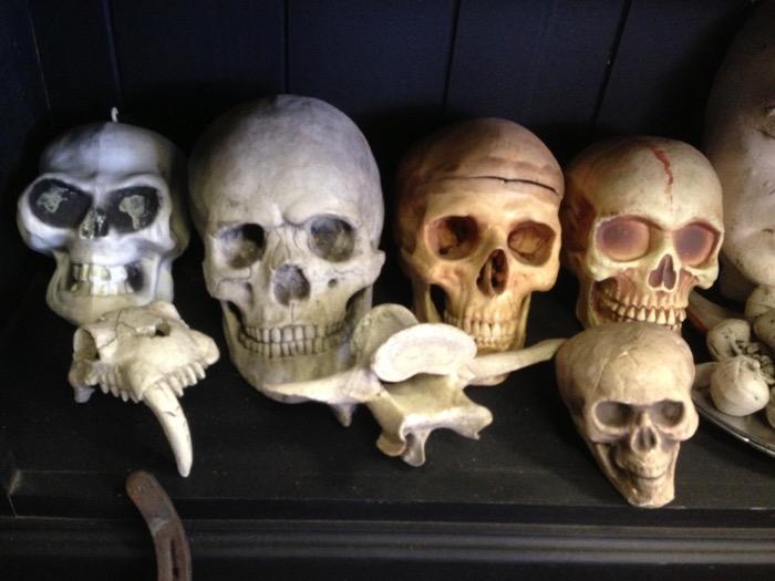 Human Skulls - Prop For Hire
