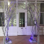 Icebar Trees - Prop For Hire