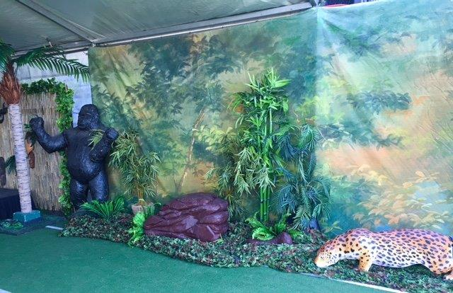 Jungle Animals - Prop For Hire