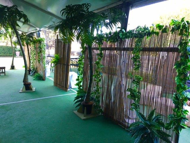 Jungle Screen - Prop For Hire