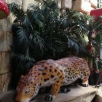 Leopard - Prop For Hire