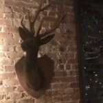 Lodge Deerhead - Prop For Hire