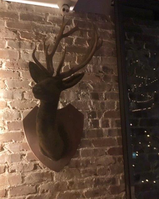Lodge Deerhead - Prop For Hire