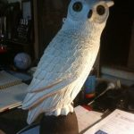 Owl - Prop For Hire