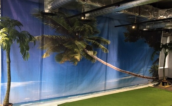 Pacific Island Backdrop - Prop For Hire
