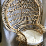 Peacock Chair - Prop For Hire