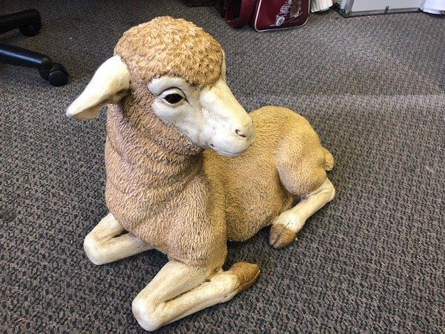Relaxed Lamb - Prop For Hire