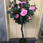 Rose Bush Pink - Prop For Hire
