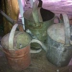 Rustic Watering Cans - Prop For Hire