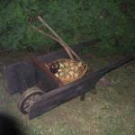Rustic Wheelbarrow - Prop For Hire