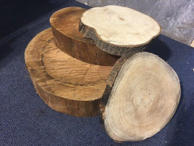 Sliced Tree - Prop For Hire