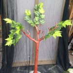 Small Tree - Prop For Hire