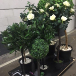 Striking Topiary - Prop For Hire
