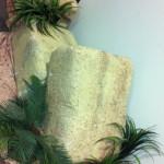Succulents - Prop For Hire