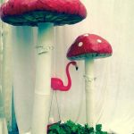 Toadstools - Prop For Hire