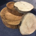 Tree Slices - Prop For Hire