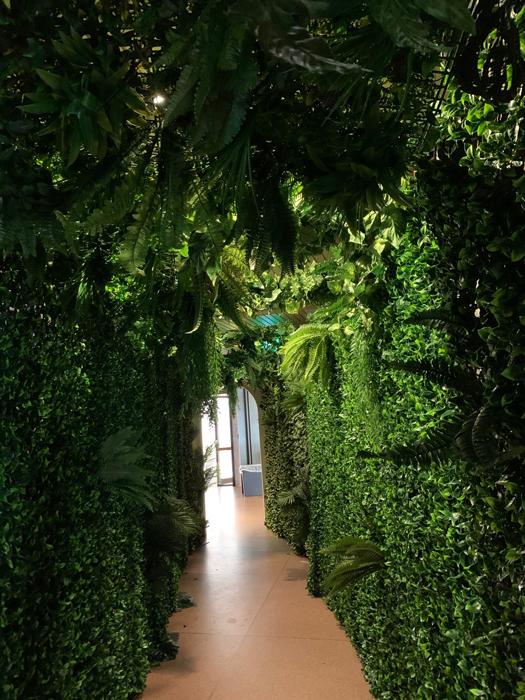 Tropical Walls - Prop For Hire
