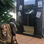 Wild West Entrance - Prop For Hire