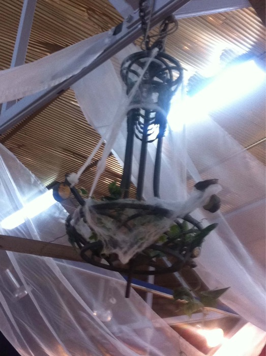 Wrought Iron Chandelier - Prop For Hire